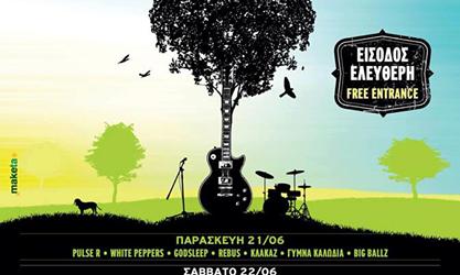 Pulse-R live@Park Festival